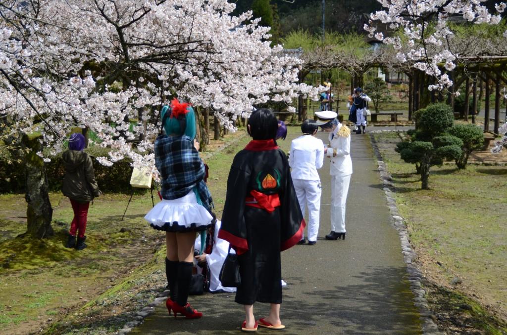 春の撮影風景