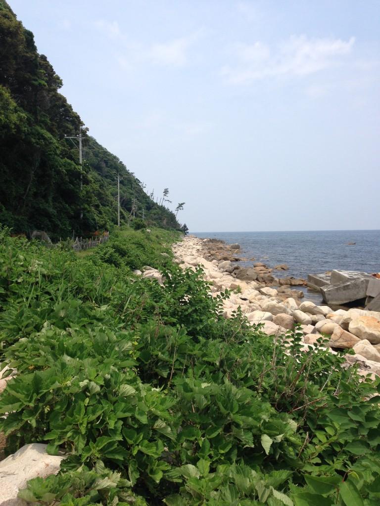 敦賀半島の先端 立石