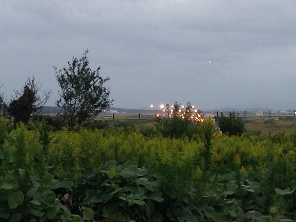 小松空港の滑走路の見える場所